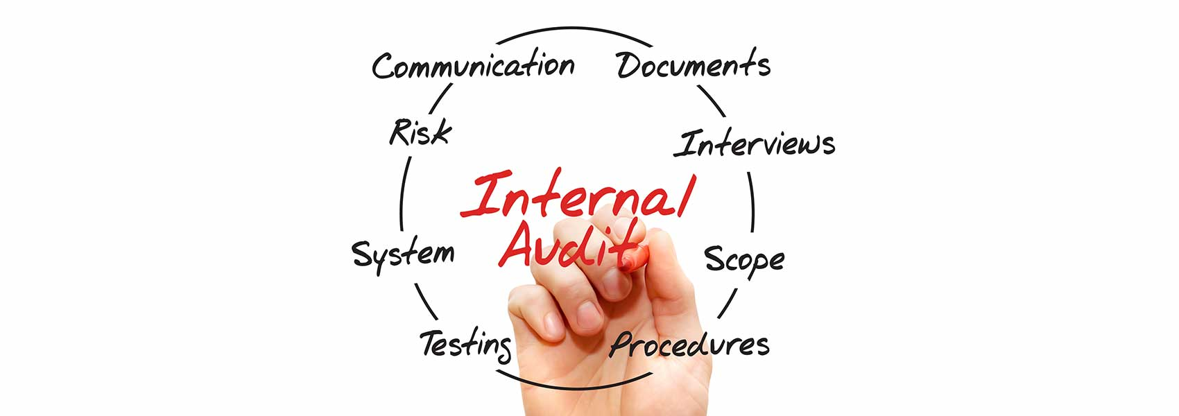 internal audit chart